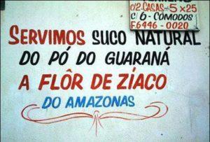 Flor de Ziaco